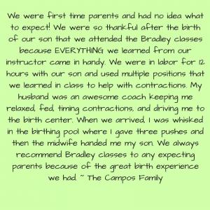 Bradley 3